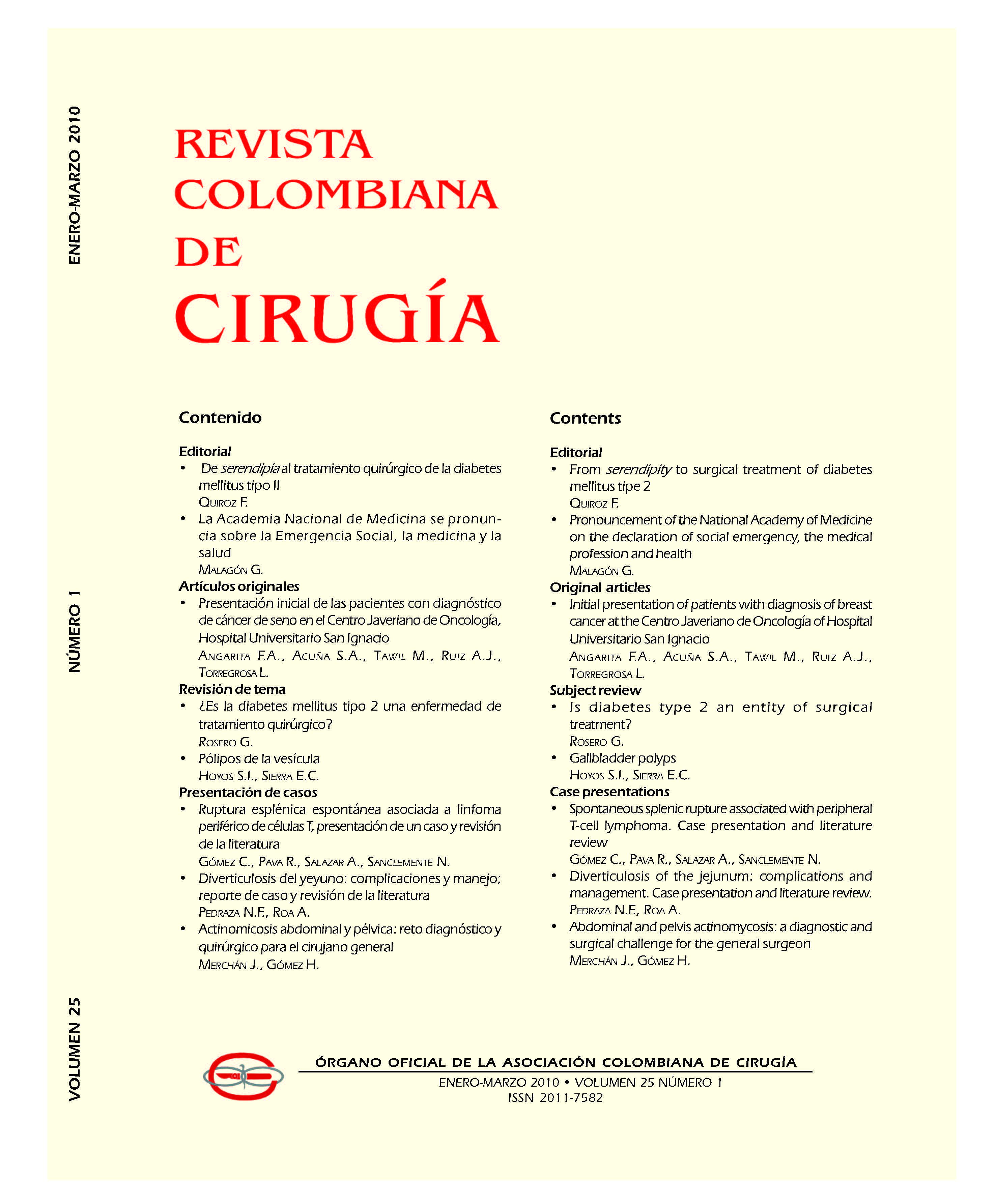 Ver Vol. 25 Núm. 2 (2010)